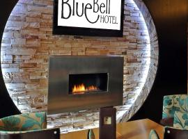 The BlueBell Hotel, Нит