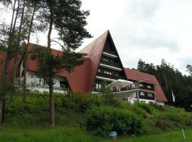 Ubytování Laguna Slapy, Nebřich