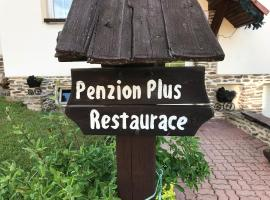 Penzion Plus, Vacov (Benešova Hora yakınında)