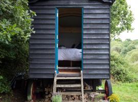 Beautiful, Secluded Shepherd's Hut in the National Park, Rake (рядом с городом Liphook)