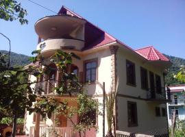 Guesthouse ,, Moli'', Sharabidzeebi (рядом с городом Mirvet'i)