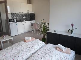 Exclusive Apartment Kolbenova next to subway