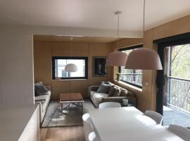 Sasalis 9 - Falls Creek Private Apartment