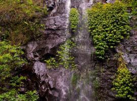 Nimbin waterfall Retreat bedsitter, Nimbin