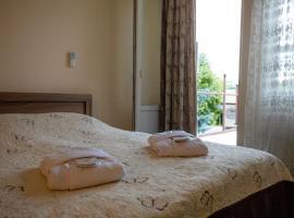 Leader Hotel, Gori
