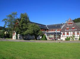 Naturhotel Lindenhof, Rechenberg-Bienenmühle