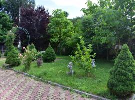 Casa Oltul, Călimăneşti (À proximité de: Băile Olăneşti)
