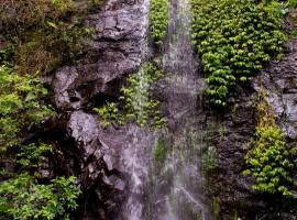 Nimbin waterfall retreat, Nimbin (Midginbil yakınında)