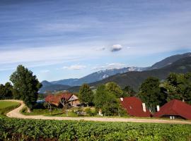 Tourist Farm Visočnik
