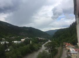 niko, P'onichala (рядом с городом Крцаниси)