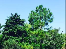 Quinta los pinos