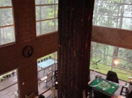 BEAUTIFUL PRIVATE CABIN & FOREST