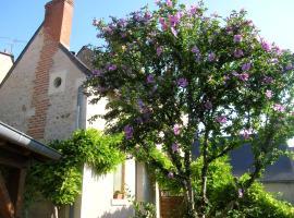 Le Petit Jardin Yoyo, Monts (рядом с городом Thilouze)