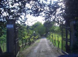 Casina Lavanda, Tarano