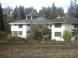 Gaviota Peruana, Hacienda San Nicolás (Guano yakınında)