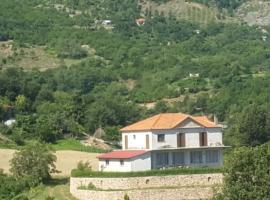 Villa BUSH, Librazhd (Qukës-Shkumbin yakınında)