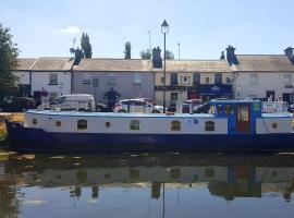 Roisin Dubh Houseboat, Sallins (рядом с городом Sherlockstown)
