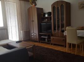 Apartment Zenica, Zeniça