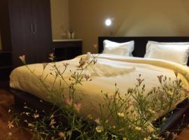 Panorama Green View Hotel Nuwara Eliya