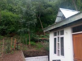 The Silver Oak Homestay, Шимла (рядом с городом Арки)