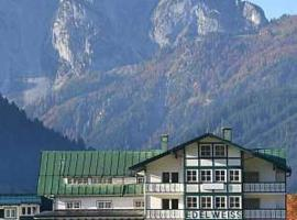Pension Edelweiss Top 35