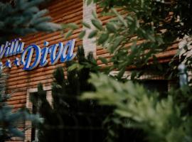 Pensiunea Villa Diva, Budureasa