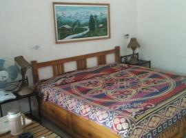 Hill View Room In Ranikhet, Chaubattia