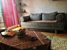 Apartman Vila Cetinje