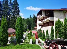 Hotel Poiana Ursului