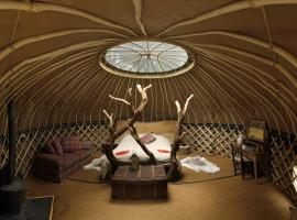 Coracle thr yurt, Holditch (рядом с городом Thorncombe)