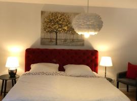 Luxury Apartment Heidelberg