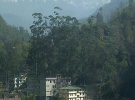 Paradise Rooms in Gangtok