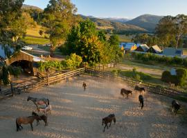 Working horse property