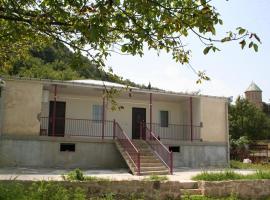 David's Homestay, Кутаиси (рядом с городом Motsameta)