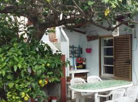 Lemon tree house