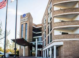 Comfort Suites Raleigh Durham Airport/RTP