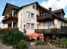 Hotel Ursula Garni, Bad Brückenau (Staatsbad Brückenau yakınında)
