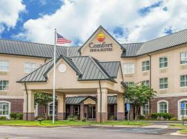 Comfort Inn Suites Daphne