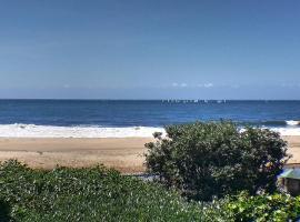 Ocean View Delight