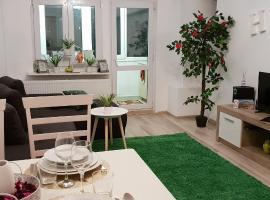 Apartament Transilvania 21A