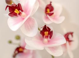 B&B Orchidea