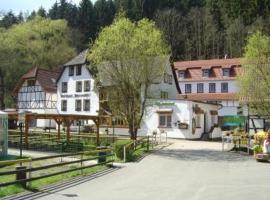 Waldhotel Pfarrmühle, Eisenberg (Hermsdorf yakınında)