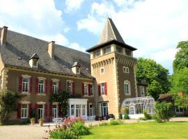 Chambres d'Hôtes Château de Viviez, Viviez (рядом с городом Decazeville)