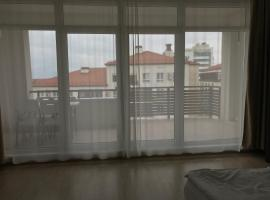 Apartment Imeritinsky on Parusnoy