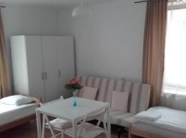 Apart & Hostel Guest Room Brendan