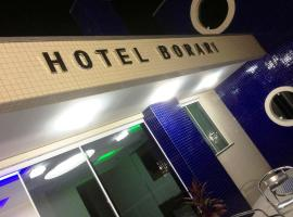 伯拉里酒店