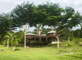 The Treehouse Cayo