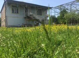 Kulashi Strawberry House