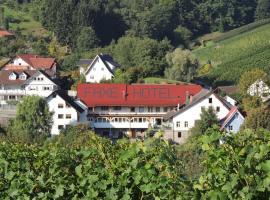 Hotel Faxe Schwarzwälder Hof, Kappelrodeck (Ringelback yakınında)