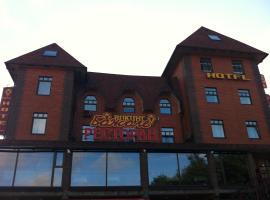 Отель Викинг